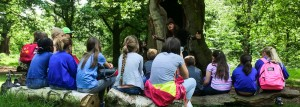sherwood forest adventure